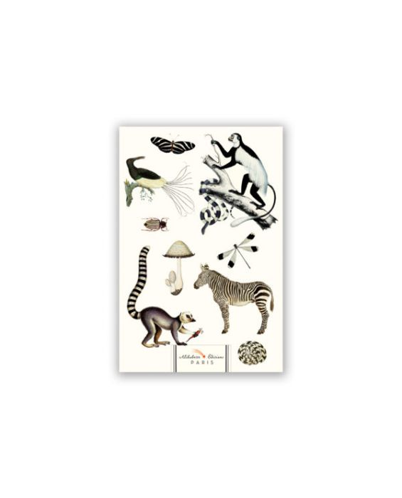 Alibabette Editions Black and White A5 Notebook